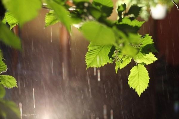 Sabahdan havanın temperaturu aşağı düşəcək, yağış yaşacaq, güclü külək əsəcək -  XƏBƏRDARLIQ