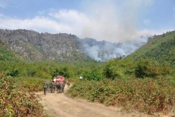 FHN dağlıq ərazidəki yanğınla bağlı məlumat yaydı
