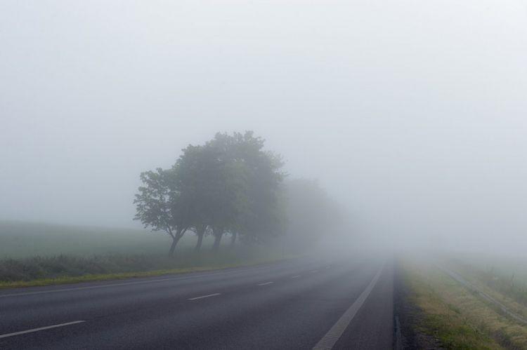 Sabahın havası -  Bakıda duman olacaq...