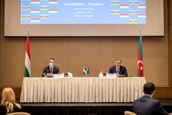 Macarıstanın biznes nümayəndələri ilə görüş olub