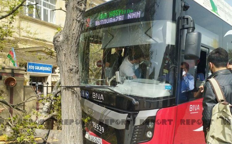 """""""BakuBus""""ın avtobusu ağaca çırpılıb, xəsarət alanlar var -  VİDEO"""