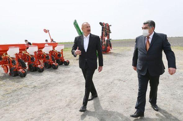 İlham Əliyev pambıq tarlasında səpin prosesini izlədi -  FOTO