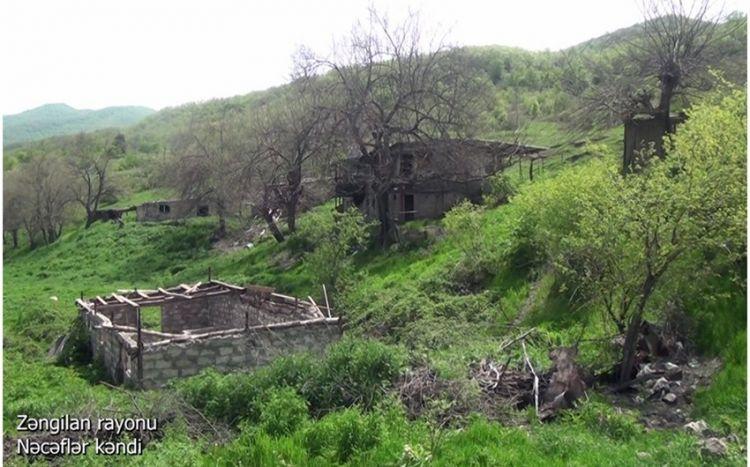 Zəngilanın Nəcəflər kəndindən görüntülər -  VİDEO