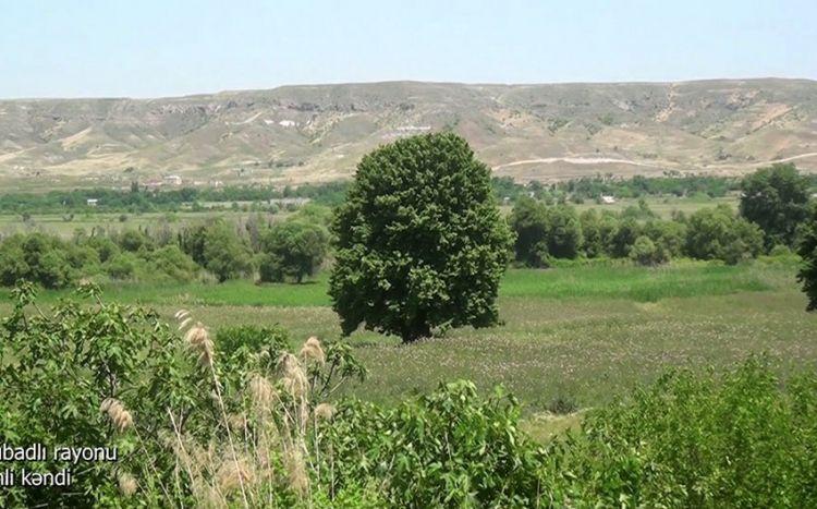 Qubadlının Tinli kəndindən görüntülər -  VİDEO