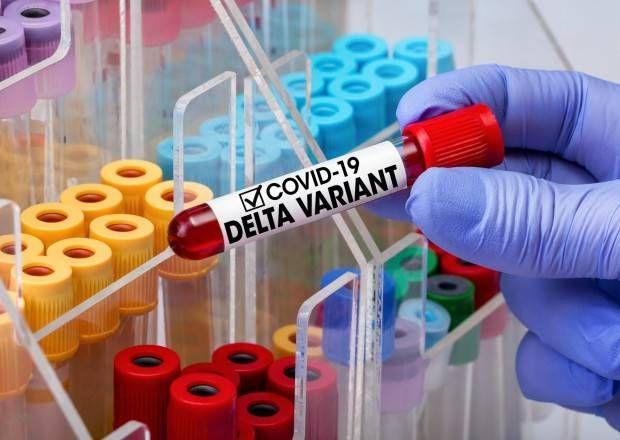 """Azərbaycanda 31 nəfərdə koronavirusun """"Delta"""" ştammı aşkarlandı -  RƏSMİ"""