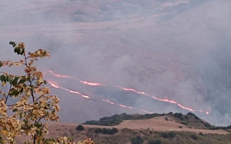 Ağsu və Şamaxının dağlıq ərazilərində yenidən yanğınlar başlayıb -  FOTO