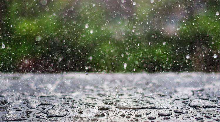 Oğuzda 2 saat yağan yağış sel yaradıb