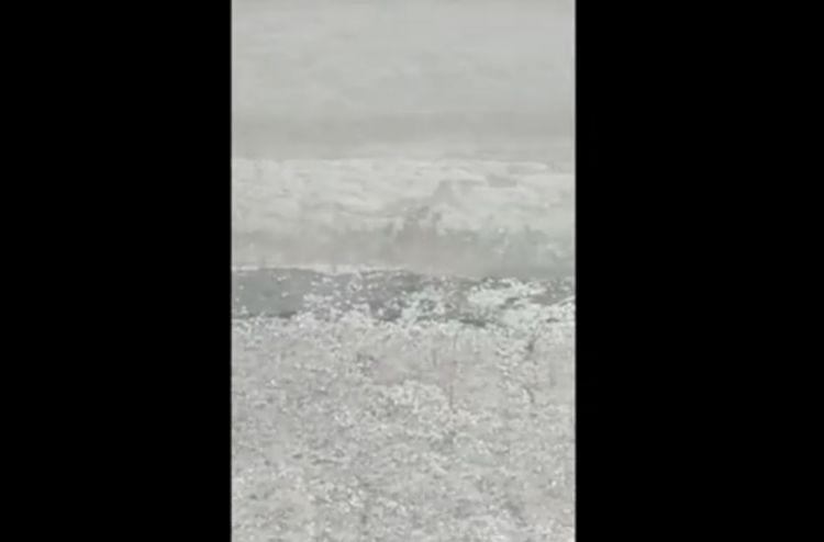 Tovuza dolu görün necə yağdı - VİDEO