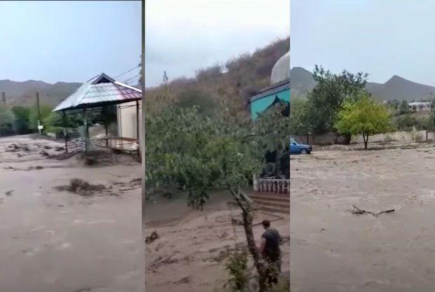 Tovuzda sel suları məktəb və evlərə doldu -  VİDEO