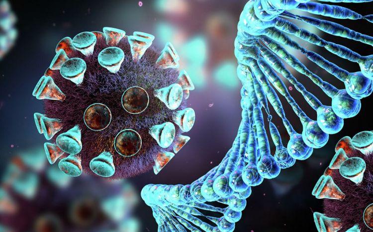 Koronavirusa qarşı effektli dərman hazırlanıb