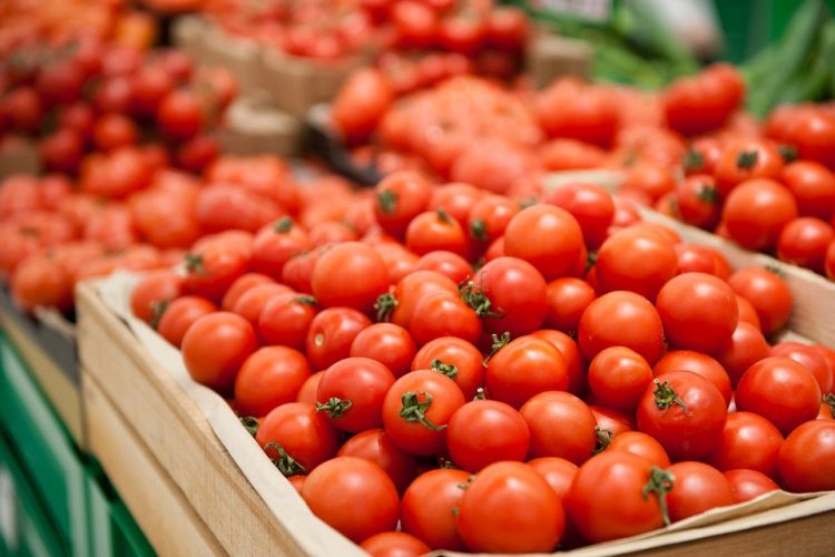 Ölkədə pomidorun qiyməti niyə kəskin bahalaşıb?