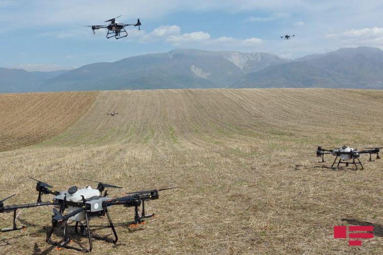 İsrail mütəxəssisləri dronların idarə olunması ilə bağlı İsmayıllıda təlim keçir - FOTO