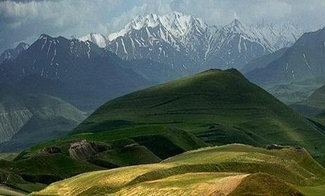 Ermənilərin sürüsü Azərbaycan ərazisinə keçdi